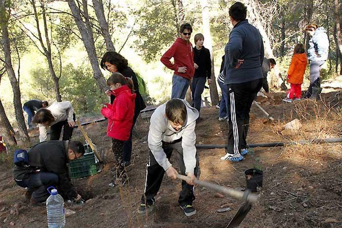 Participantes sembrando algarrobos y otros árboles